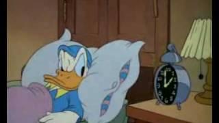 بطوط - النوم باكراً