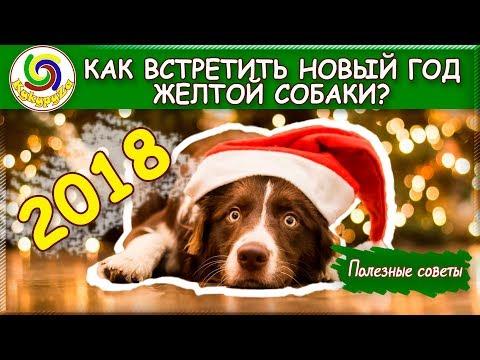 КАК ВСТРЕЧАТЬ НОВЫЙ 2018 ГОД ЖЕЛТОЙ СОБАКИ? | Полезные советы