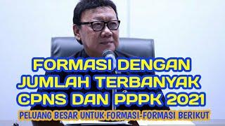 RINCIAN FORMASI TERBANYAK PPPK DAN CPNS 2021