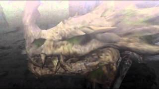 "Monster Hunter Freedom Unite -- ""Lao-Shan Lung?!"" (Shen Gaoren Intro)"
