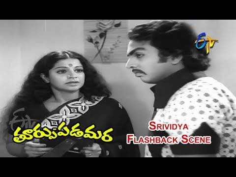 Thoorpu Padamara Telugu Movie   Srividya Flashback Scene   Narasimha Raju   Srividya   ETV Cinema