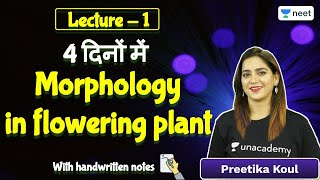 NEET: Morphology in flowering plant | Lecture -1 | Biology | Unacademy NEET | Preetika Koul