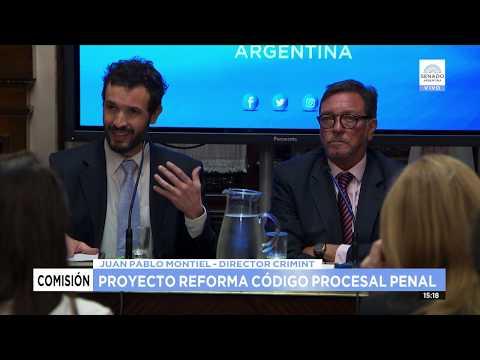 proyecto-ley-reforma-al-cÓdigo-penal-27-08-19