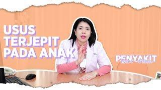 Mengenal Dokter | Puri Animation.