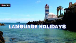 Portuguese Language Courses Across the World – Learn Portuguese with Cactus Language