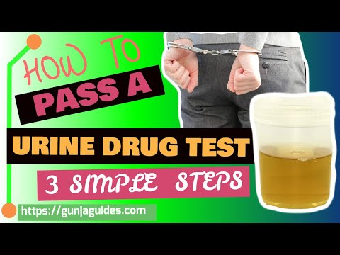 How To Pass A Urine Drug Test 👍  Three Simple Methods 👍 (2019)🤔