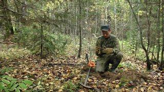 Покопал в двух лесных урочищах #299