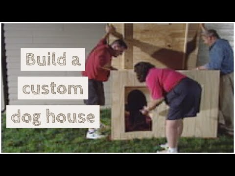 How to build a doghouse youtube Custom build a house online