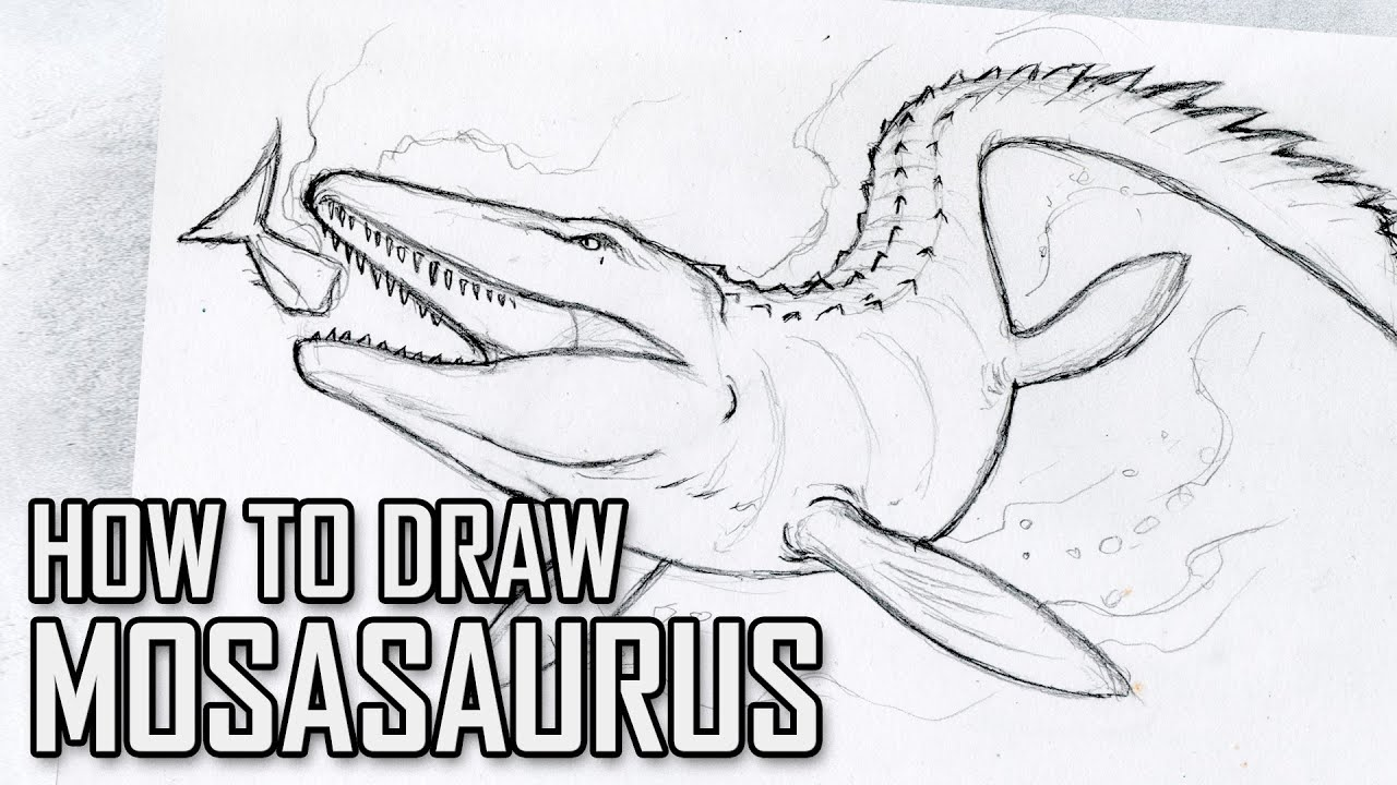how to draw mosasaurus from jurassic world  tutorial