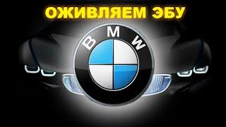 Ремонт ЭБУ (мозги) BMW.