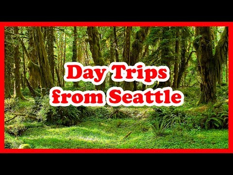 5 Top-Rated Day Trips from Seattle, Washington | United States Day Tours Guide