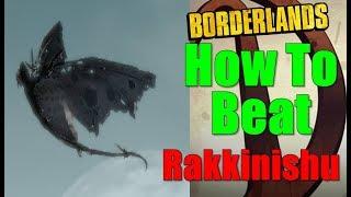 Borderlands How To Beat Rakkinishu Walkthrough Random Encounter Gameplay Commentary HD