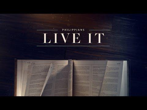 Live It - week 8
