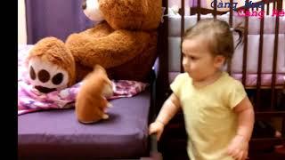 Talking Hamster - Đồ chơi Chuột Hamster biết nói
