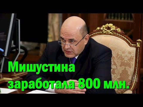 Жена премьера Мишустина заработала 800 млн рублей - Навальный