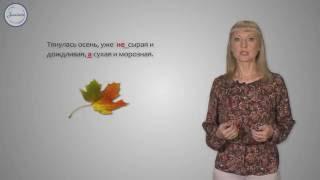 Уроки русского НЕ с прилагательными