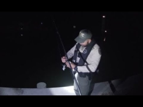 Florida Game Warden Inspection On CRAZY FISHING TRIP