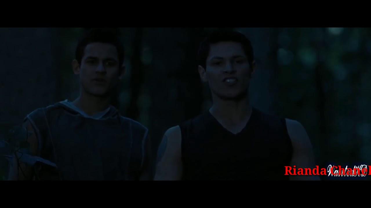 Serigala Vs Vampire