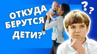 Половое воспитание. Часть 2. Откуда берутся дети? Беседы с детьми 3-5 лет (0+)