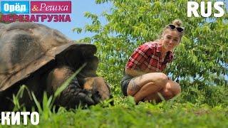 Центр мира! #7 Кито. Орёл и Решка. Перезагрузка. RUS