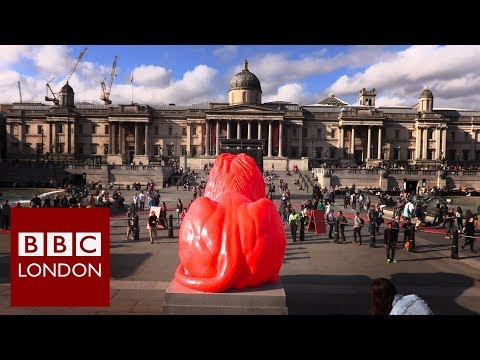 Why there's a new lion in Trafalgar Square - BBC London