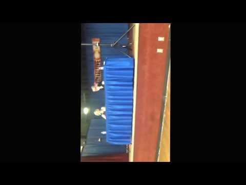 Kari Wahlgren Collective Con 2017 Panel