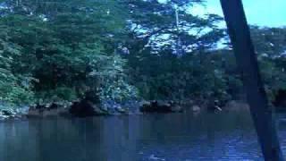 Costa Rica Palo Verde River Cruise