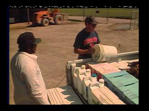 DVD0066 Pesticide  Handlers and the Workforce Protection Standard English