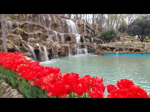 Tulip time in istanbul / Emirgan Park 2016