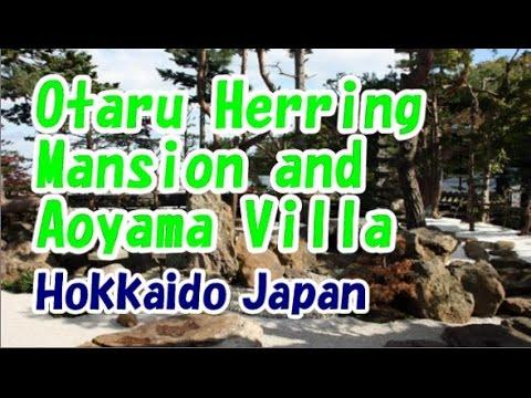 Japan Trip: Otaru to Shin palace artistic buildings Japan , Hokkaido 47 Moopon