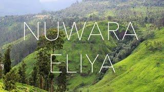 Travel Adventures in Nuwara Eliya