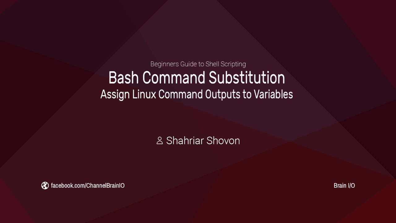10  Bash Command Substitution - Assign Linux Command Outputs to Variables