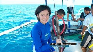 Що робити і підводної рибалки - NET24