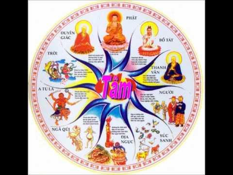 8/9 - Luân hồi và nhân quả - Phật Học Tinh Yếu - Thích Thiền Tâm