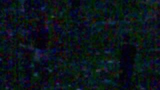 6 Festimix 5 2009 07 05 Ambiance