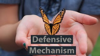 Life cycle and defensive mechanism of Monarch butterfly.