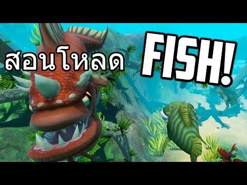 สอนโหลดเกม ปลาใหญ่กินปลาจู้เล็ก