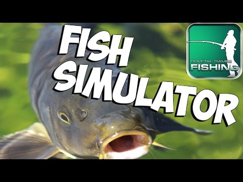 Giant wels catfish dovetail games euro fishing v1 w for Nevada fish and game
