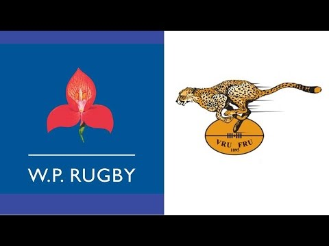 1997 Currie Cup Final - Western Province vs Freestate
