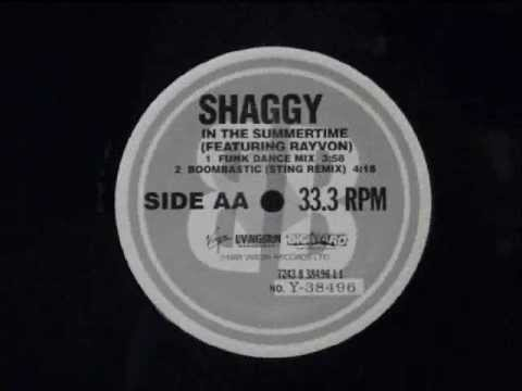 In the summertime -  Shaggy feat. Rayvon
