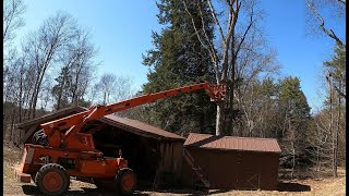 Pushing a tree down with a Telehandler