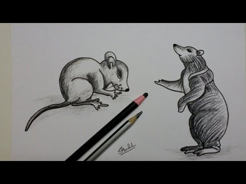 Drawing tutorial for beginners/ pencile sketch drawing for beginners/ How to draw a Rat & Bear thumbnail