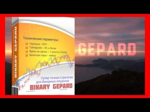 Супер Точная Торговая Стратегия для Бинарных Опционов Binary Gepard