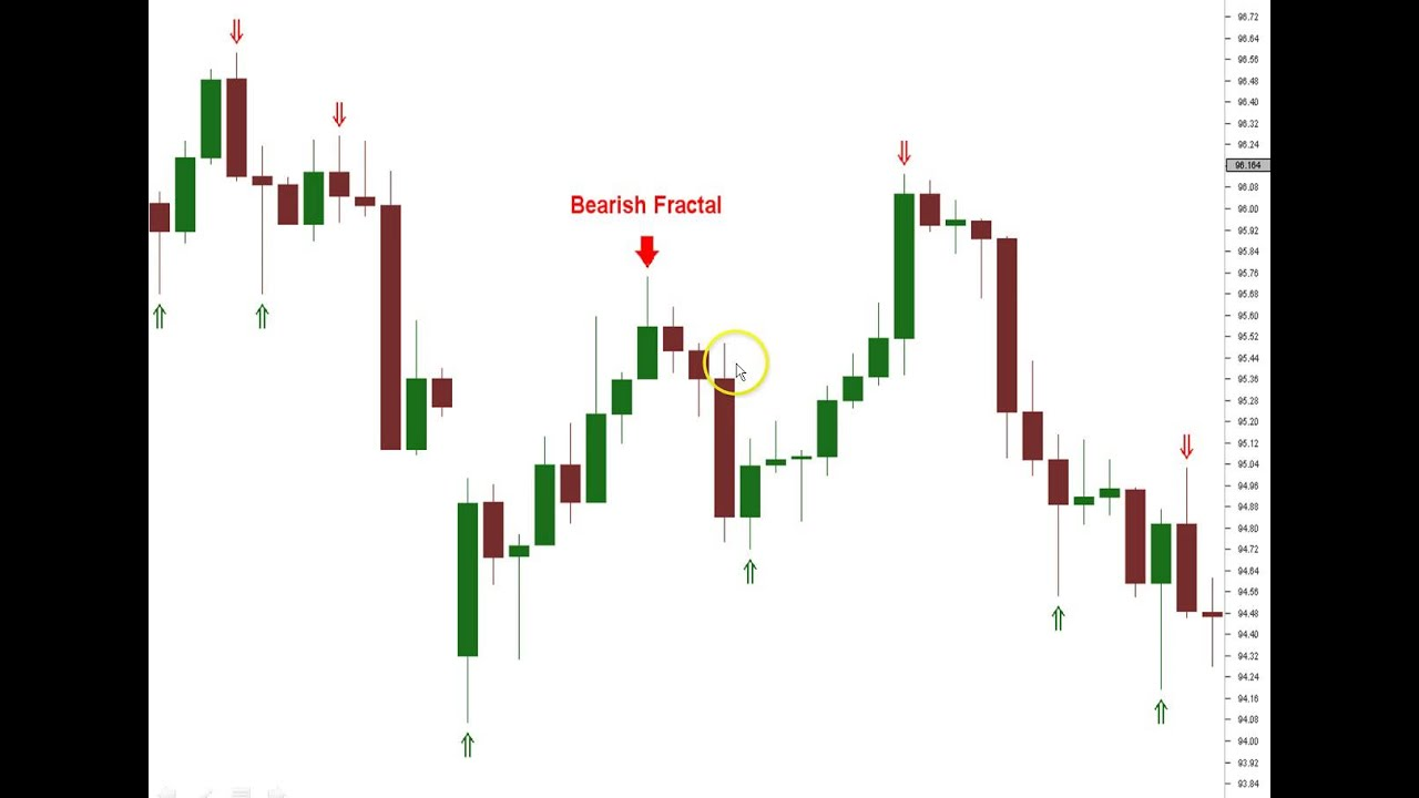Forex trading education videos
