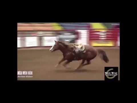 Лошадь сама пробежала маршрут.