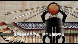 在埃及神话中,为什么法老喜欢崇拜圣甲虫(屎壳郎)?