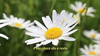 Jeff Buckley - Corpus Christi Carol (Legendado em Português)