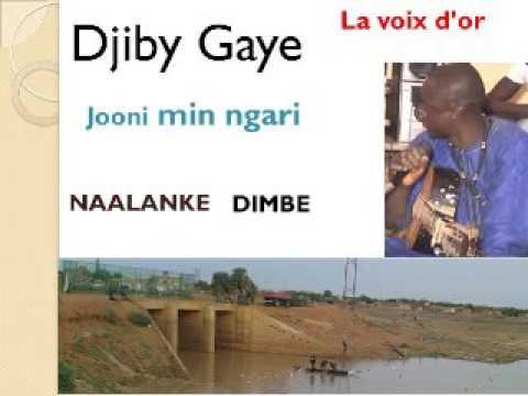 Djibi Gaye : Jooni Min Ngari
