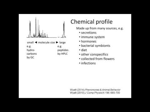 Pheromones & animal behaviour: proteins and peptides, signals and signatures by Tristram Wyatt
