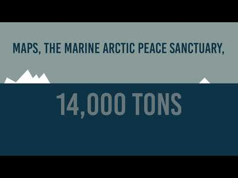 14,000 Tons Of Arctic Sea Ice Is Lost. Every. Second.